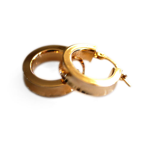 Gold Glorious Gold: Classic Small Hoops