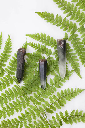 Forest Crystals with Actinolite Phantom