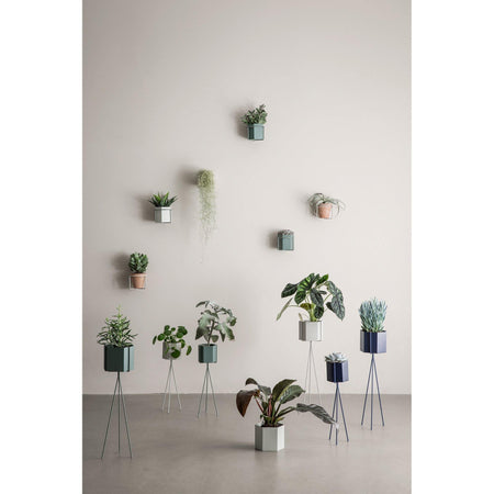 Wall-mounted flowerpot frame Plant Holder Ø15cm, different colors