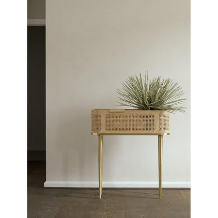 Bar Hako, island wood / brass