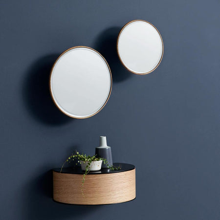 Mirror Barb, different sizes