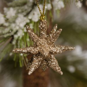 Set Of 12 Moravian Star Ornament
