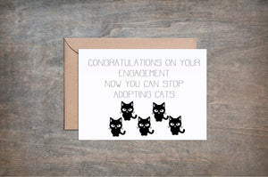 Congratulations Now You Can Stop Adopting Cats