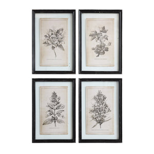 Wood Framed Wall Decor w/ Floral Image, 4 Styles