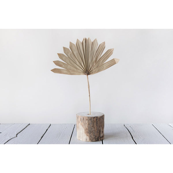 Dried Natural Palm Bunch, Sun Cut