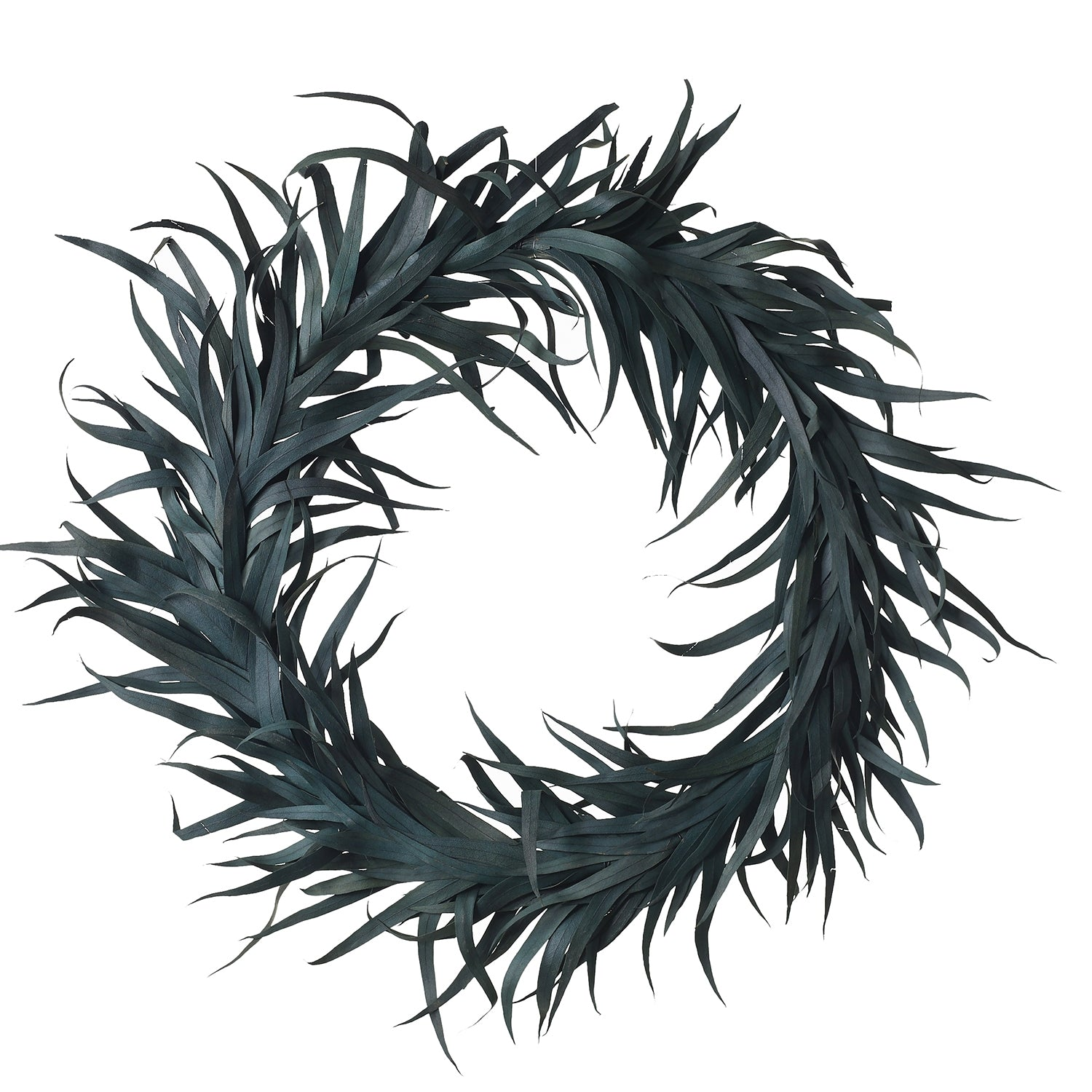 Eucalyptus Wreath | 20""