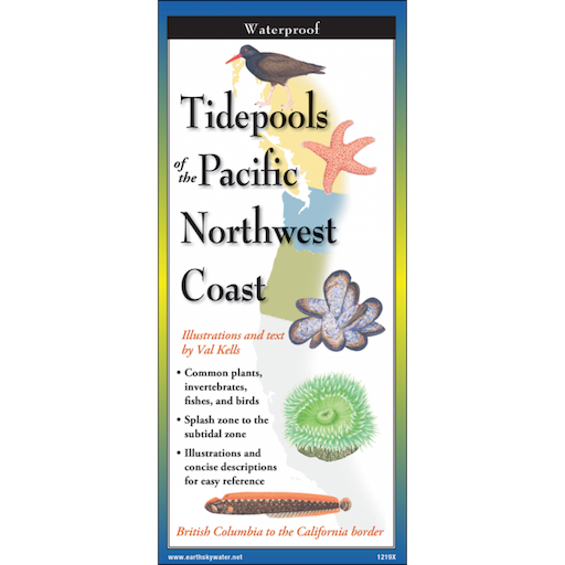 Tidepools of the Pacific Northwest Coast Field Guide