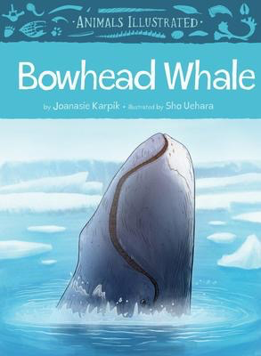 Animals Illustrated: Bowhead Whale