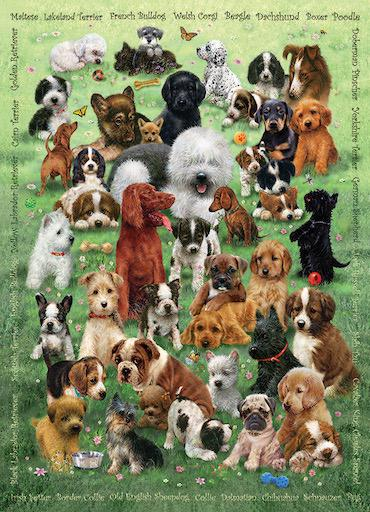 Family Puzzle - Puppy Love 350pc