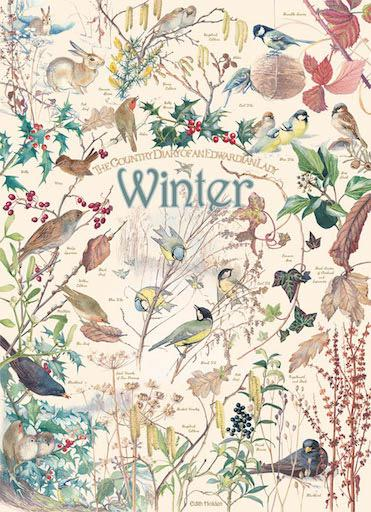 Country Diary: Winter 1000pc