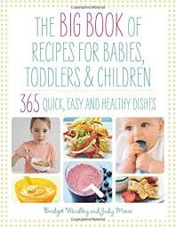 Big Book of 365 Recipes for Babies, Toddlers & Children