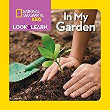 Look & Learn: In My Garden