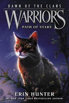 Warriors: Dawn of the Clans #6: Path of Stars