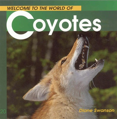 Welcome to the World of Coyotes