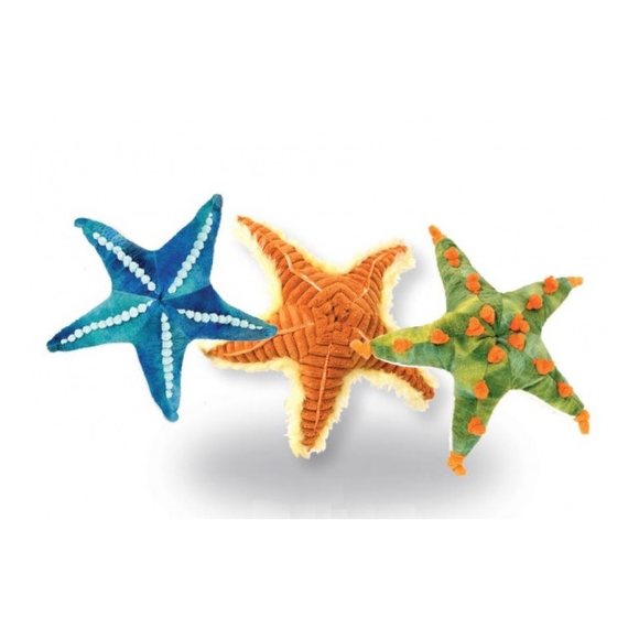"10"" Starfish Assortment"
