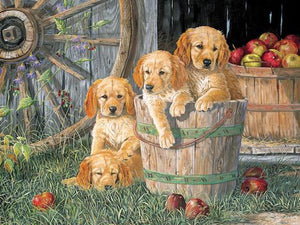 Family Puzzle - Puppy Pail 350pc