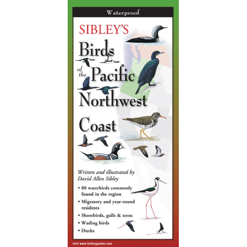 Sibley's Birds of the Pacific Northwest Coast Field Guide