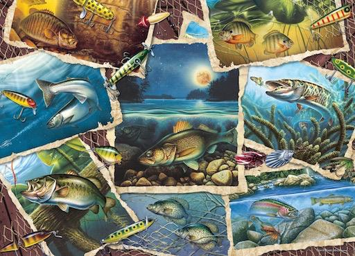 Fish Pics 1000pc