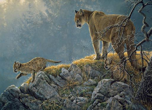 Family Puzzle - Excursion: Cougar and Kits 350pc