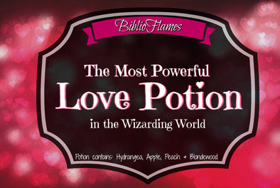 Harry Potter inspired Potions Set