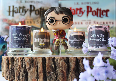August 2017 - Happy Birthday Harry!! Harry Potter inspired Bookish box