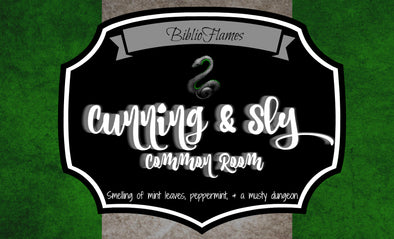 Cunning & Sly Common Room - Slytherin Inspired house