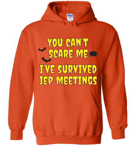 Funny You Can't Scare Me I've Survived IEP Meetings Hoodie
