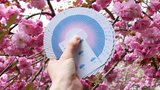 Hanami Playing Cards HCPC card backs fan