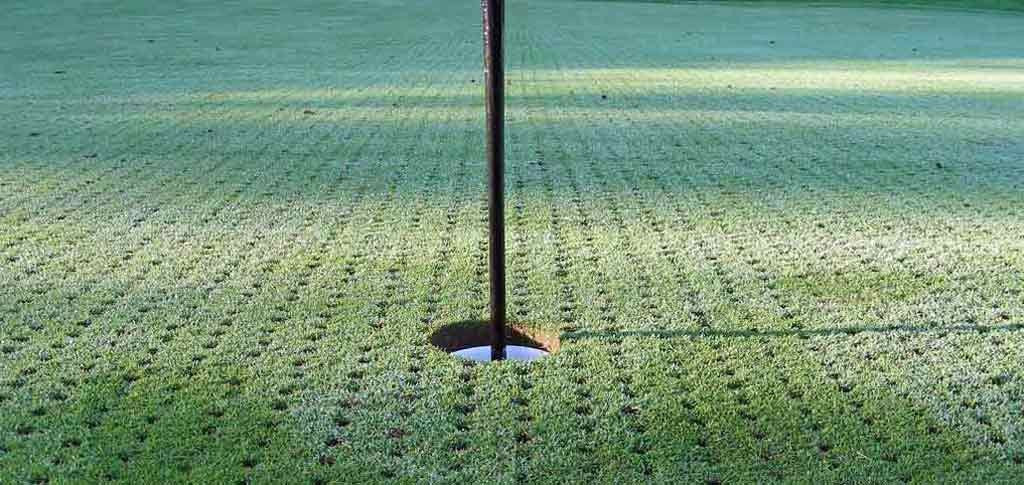 Caribbean golf courses aeration schedule