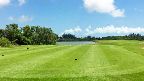 Tee box at Puerto Cancun