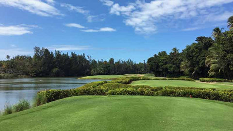 Bahia Beach Golf Course near San Juan Puerto Rico