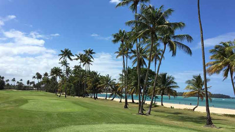 Bahia Beach offers ocean golf holes to play