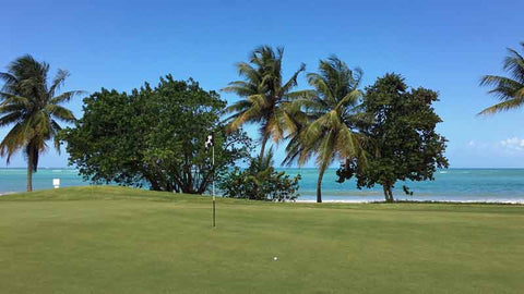18th green at Bahia Beach golf course in Puerto Rico