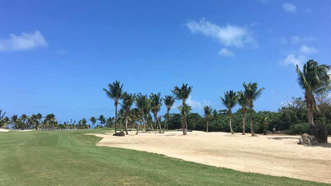 Beautiful golf at Coco Beach Puerto Rico