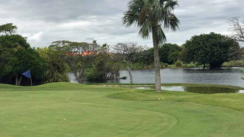 Cocotal Golf Course Punta Cana, offers excellent golf at great rates