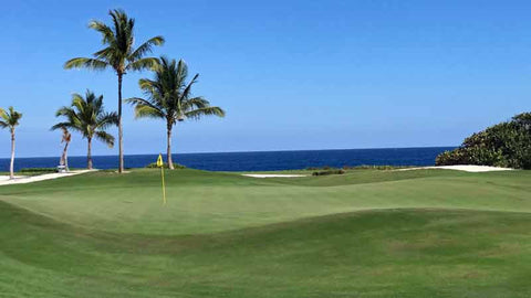 Incredible course conditions at Corales