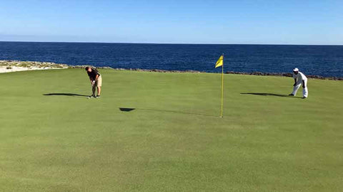 Golf Pro and caddie putting for birdie at Corales