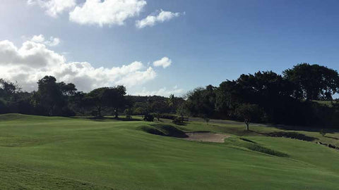 El Conquistador Golf Course near San Juan