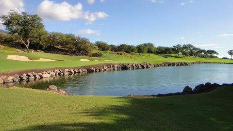 Iberostar Playa Paraiso Signature hole