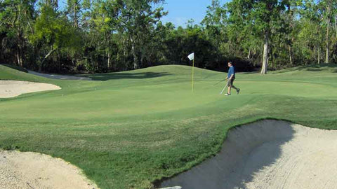 Hardrock Playacar Golf Course