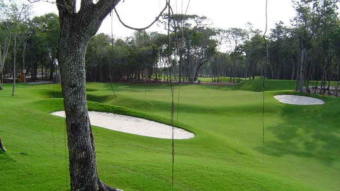 Beautiful greens and bunkers at Iberostar Playa Paraiso