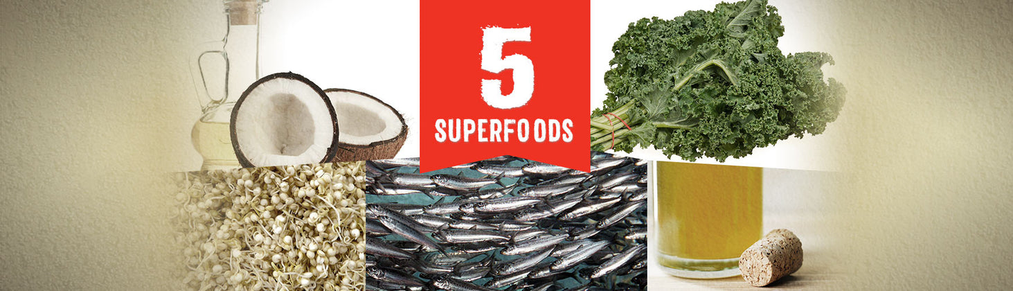 5 Superfoods for Pets