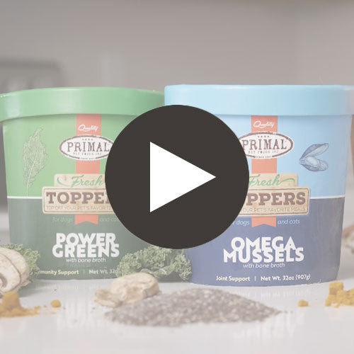 Fresh Topper <br> Omega Mussels Featured Video
