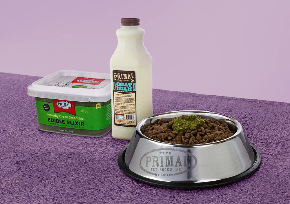 3 Tips For Adding Fresh Food To Your Pet's Meal