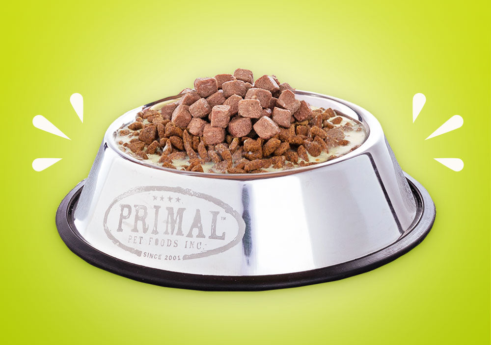 A Little of This, A Little of That:Tips To Boost Your Pet's Kibble