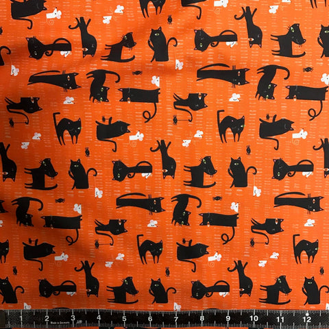 Dashwood Studio: Spooktacular - Cats