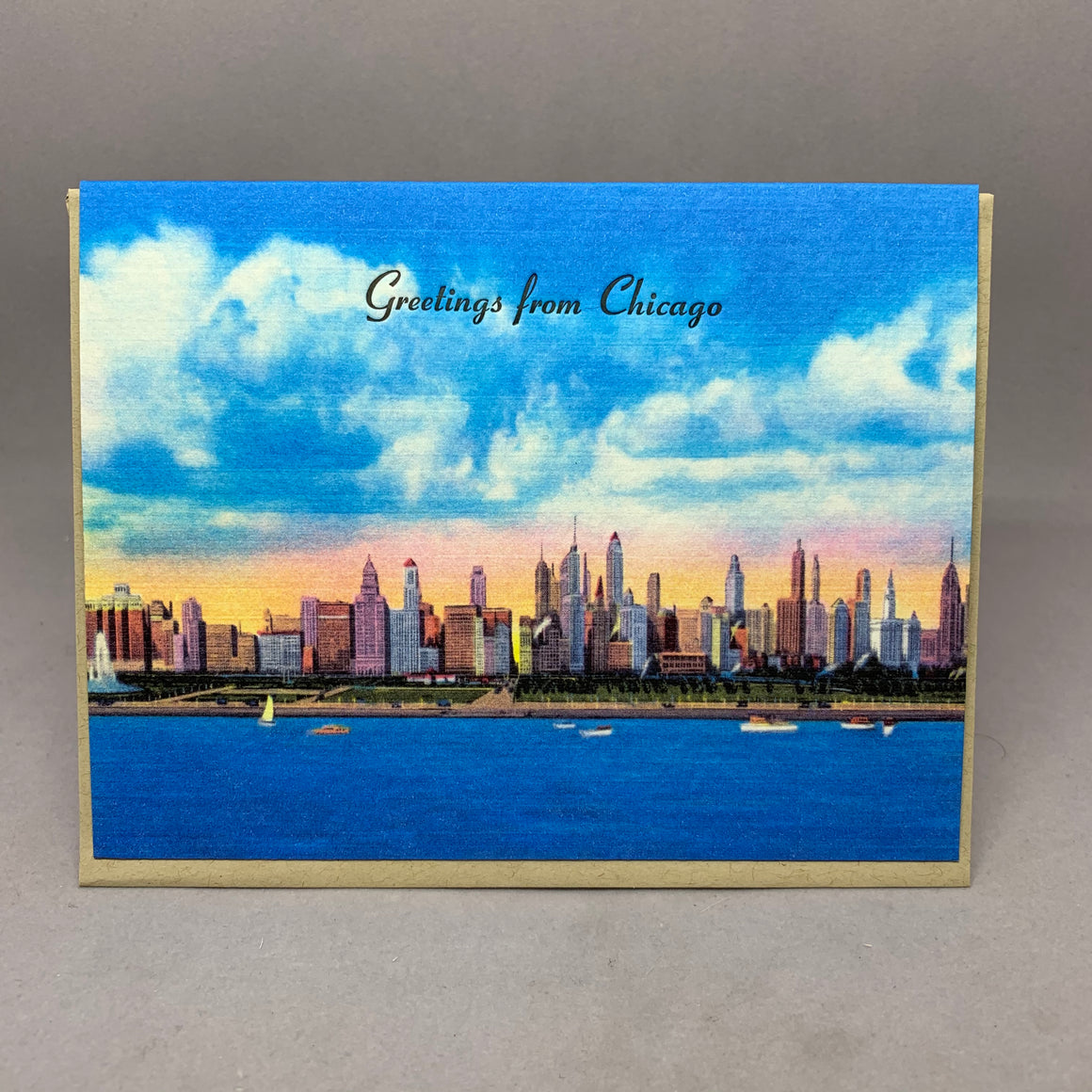 Vintage Chicago Skyline