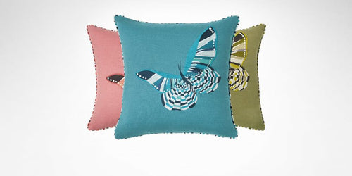 Ailes Decorative Pillow