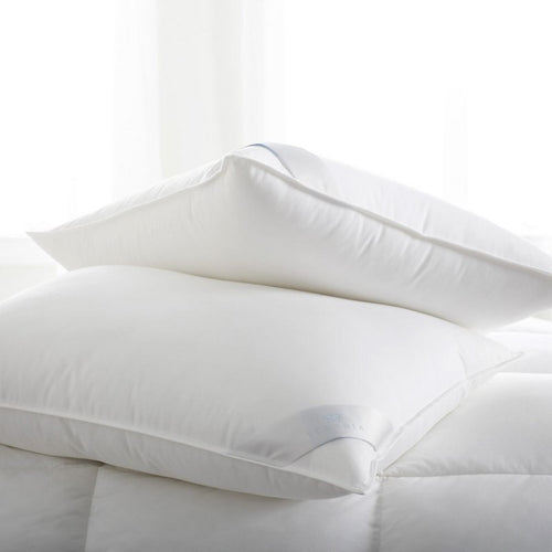 Scandia Bergen Down Free Pillows