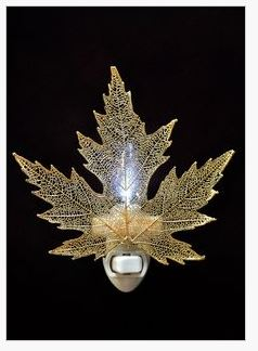 Silver Maple Nightlight